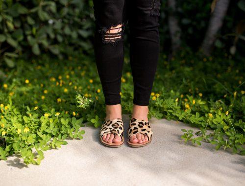 leopard-top-shop-shoes-image